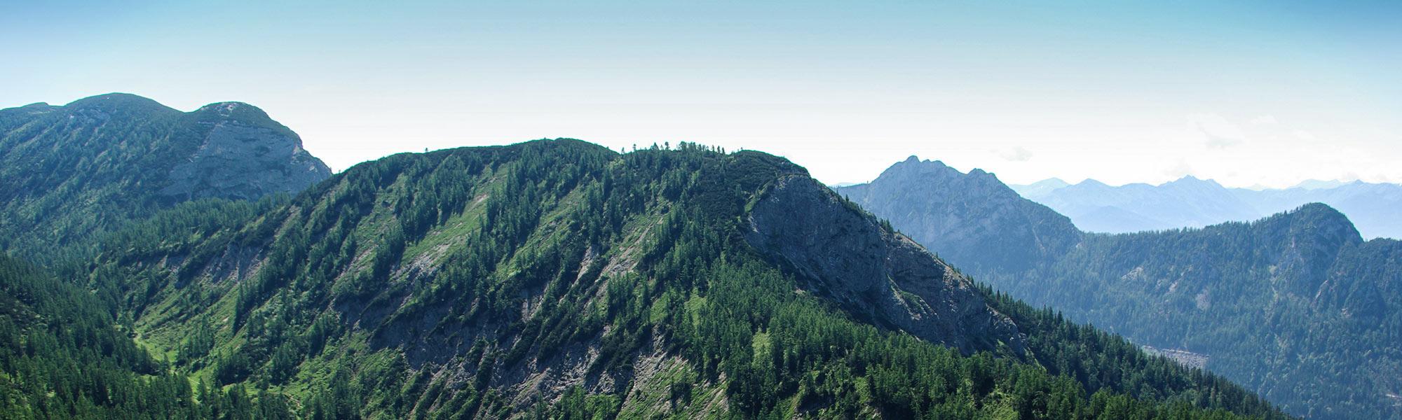 Immobilie mit Alpenblick